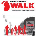 Big Red Kidney Walk, Adelaide