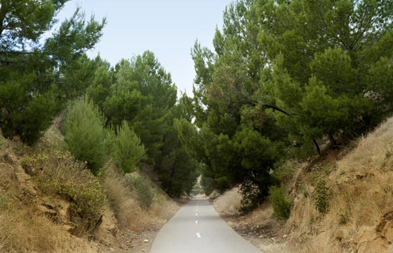 Coast to Vines Rail Trail including the Shiraz Trail