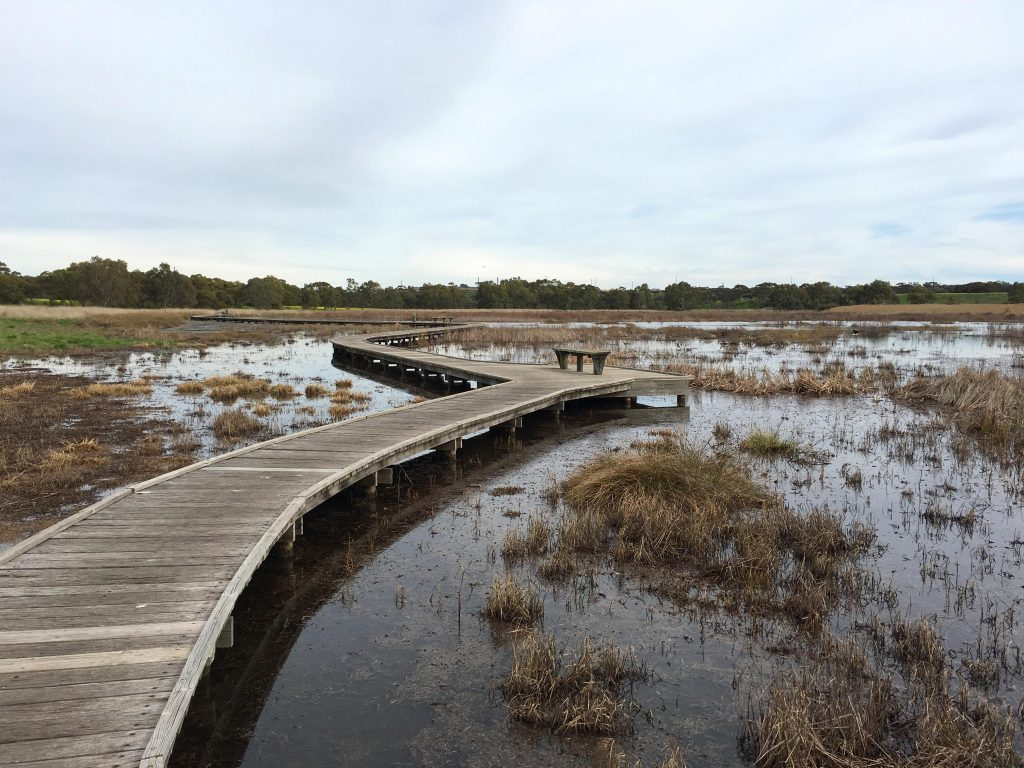 Wetlands Loop Trail, Onkaparinga River