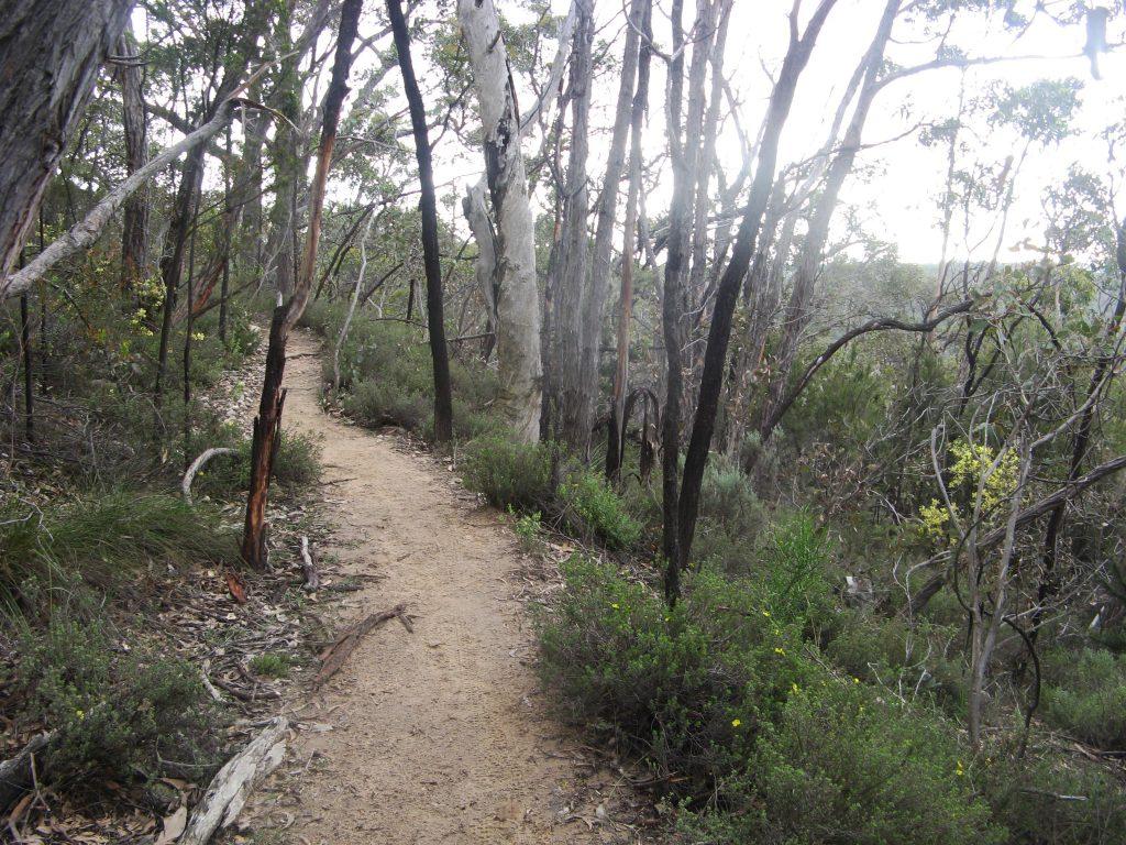 Measday Hike