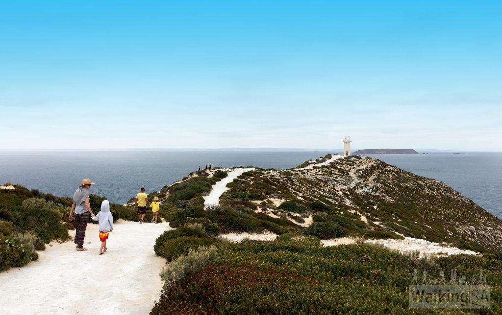 Cape Spencer Lighthouse Walk