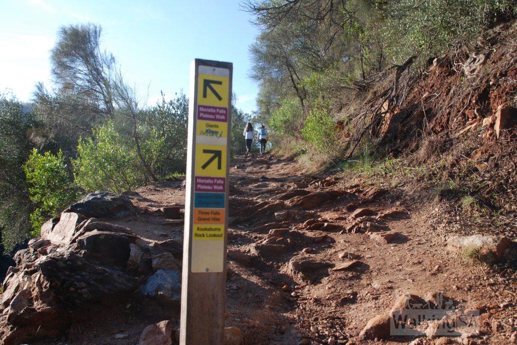 Three Falls Grand Hike, Morialta