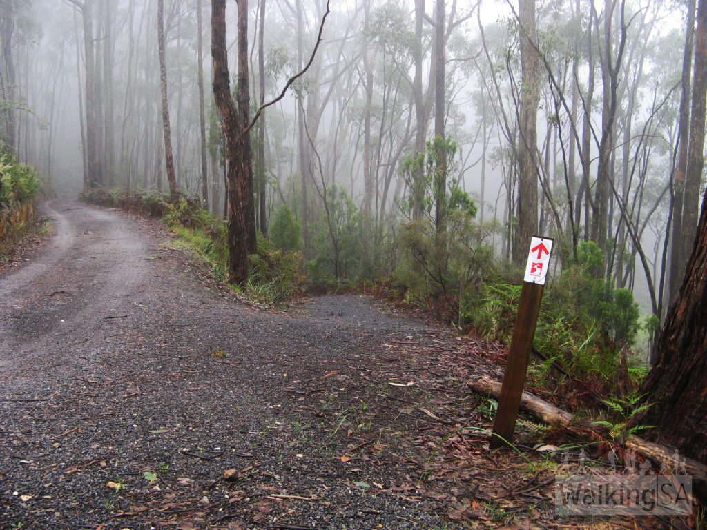 Heysen Trail Mt Lofty circuit