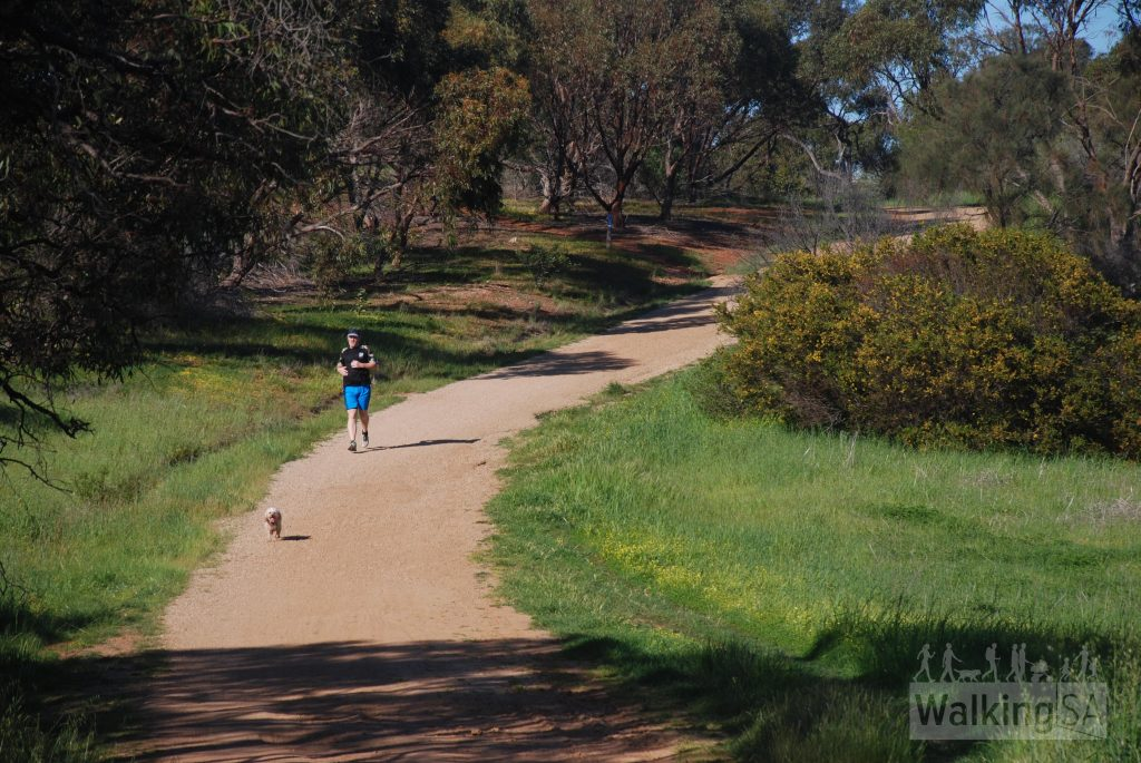 Porosa-Hike-Cobbler-Hill-Recreation-Park-10-1024x685.jpg