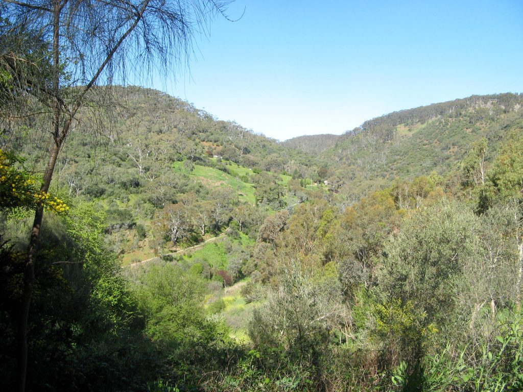 Brownhill Creek and Belair Hike Loop