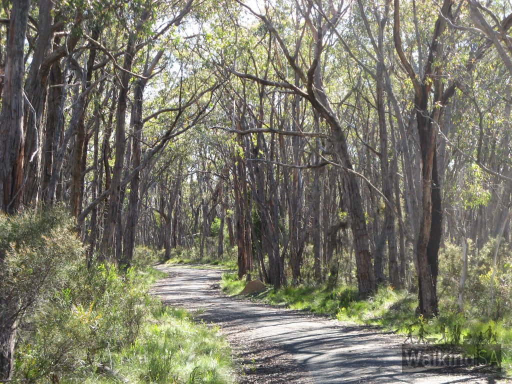 Mylor Conservation Park