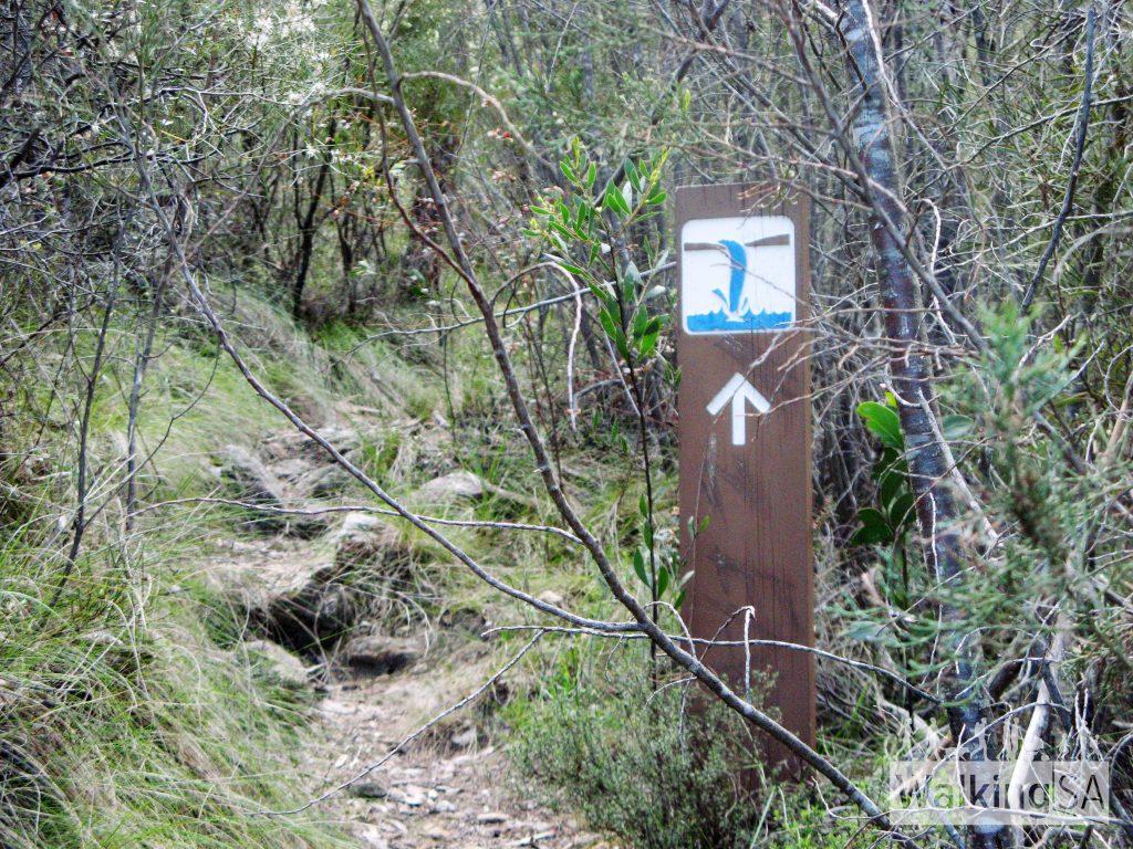 瀑布步道,马克欧力峰保育公园(Waterfall Trail, Mark Oliphant Conservation Park)