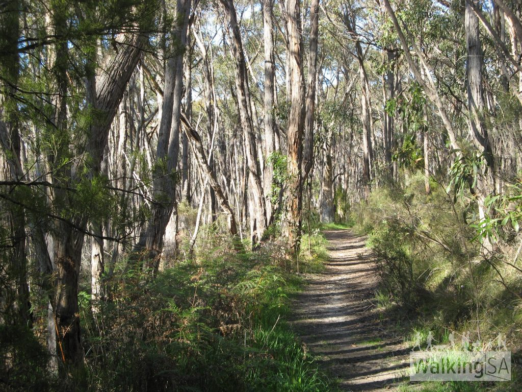 Mylor to Aldgate Loop along the Heysen Trail