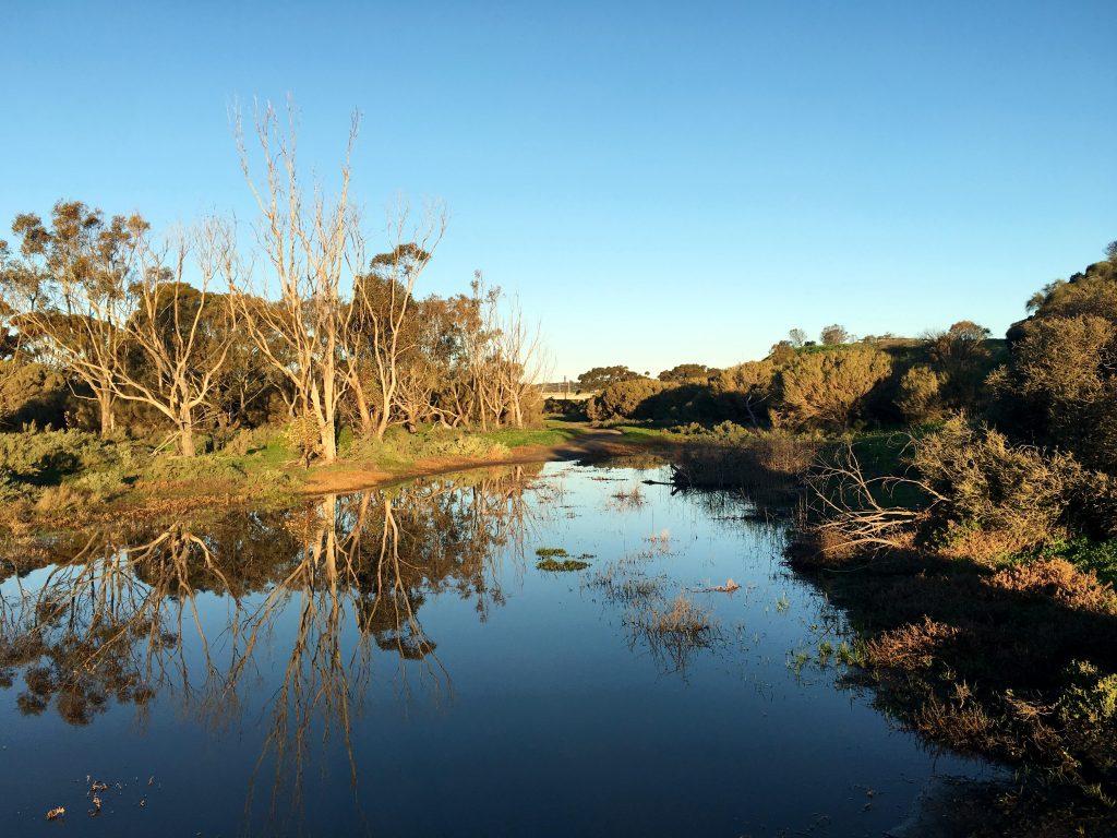 Pingle Farm Trail via estuary, Onkaparinga River Recreation Park