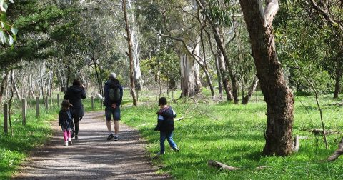 13-great-walks-for-kids-7-to-12-years-old-social-share