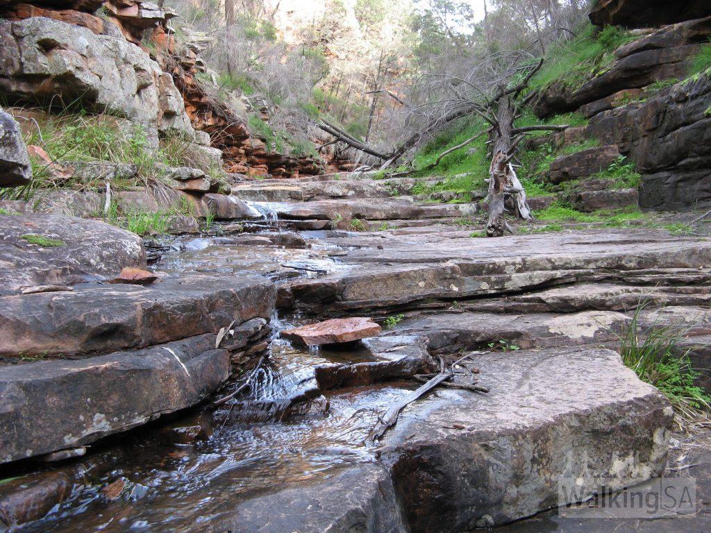 阶丘, 鳄鱼峡谷