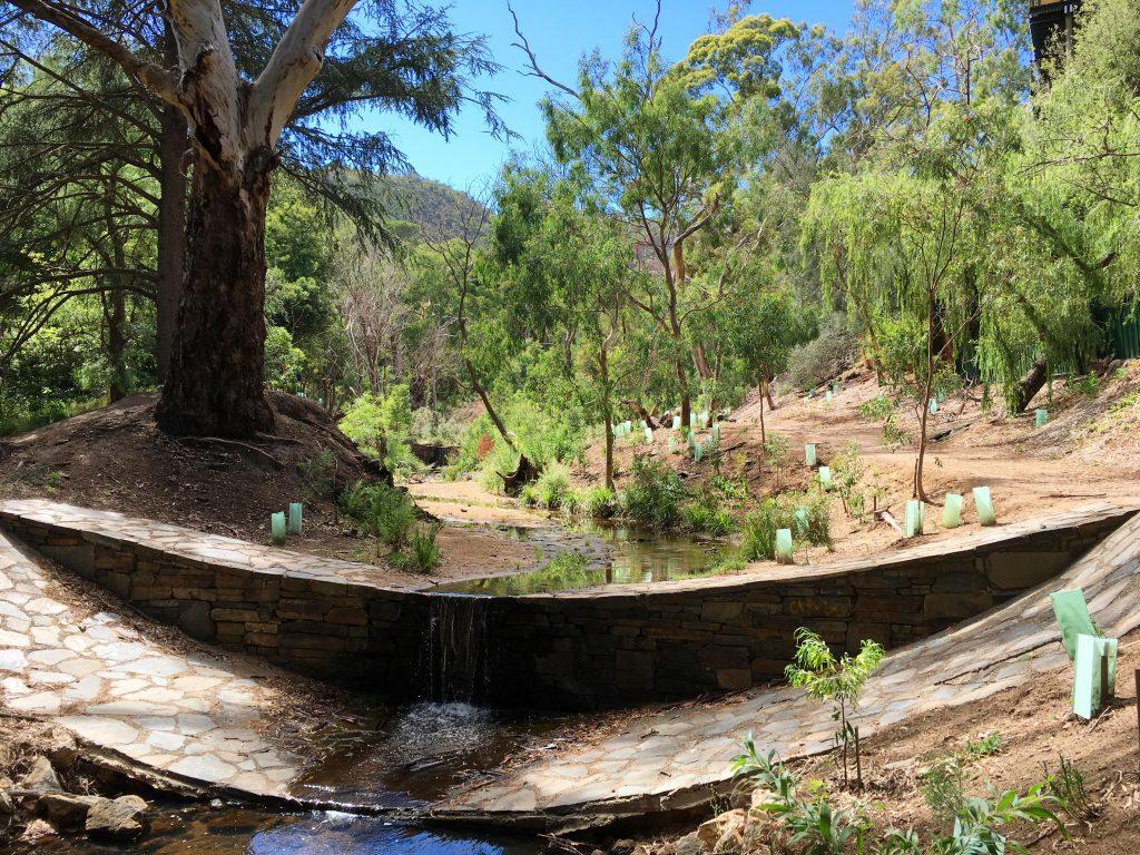 Michael Perry Botanic Reserve