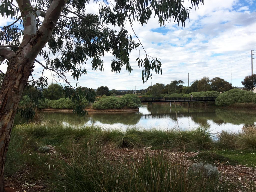 Munno Para Wetlands