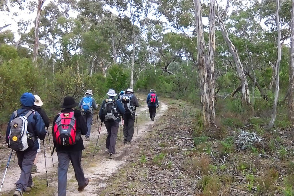 WEA Ramblers walking in Padthaway Conservation Park on their long weekend hiking trip