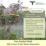 Free Guided Walk of Waite Arbotetum