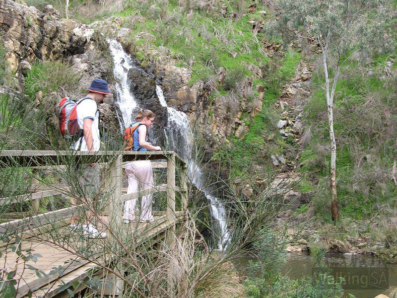 Morialta 3rd Falls