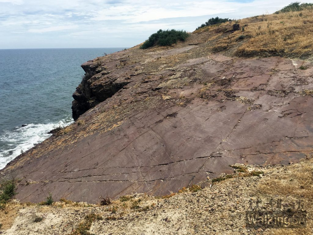 The glacial pavement on the cliff top (showing scrape marks from boulders moved in a glacier) are recognised as the best record of Permian glaciation in Australia and have international significance