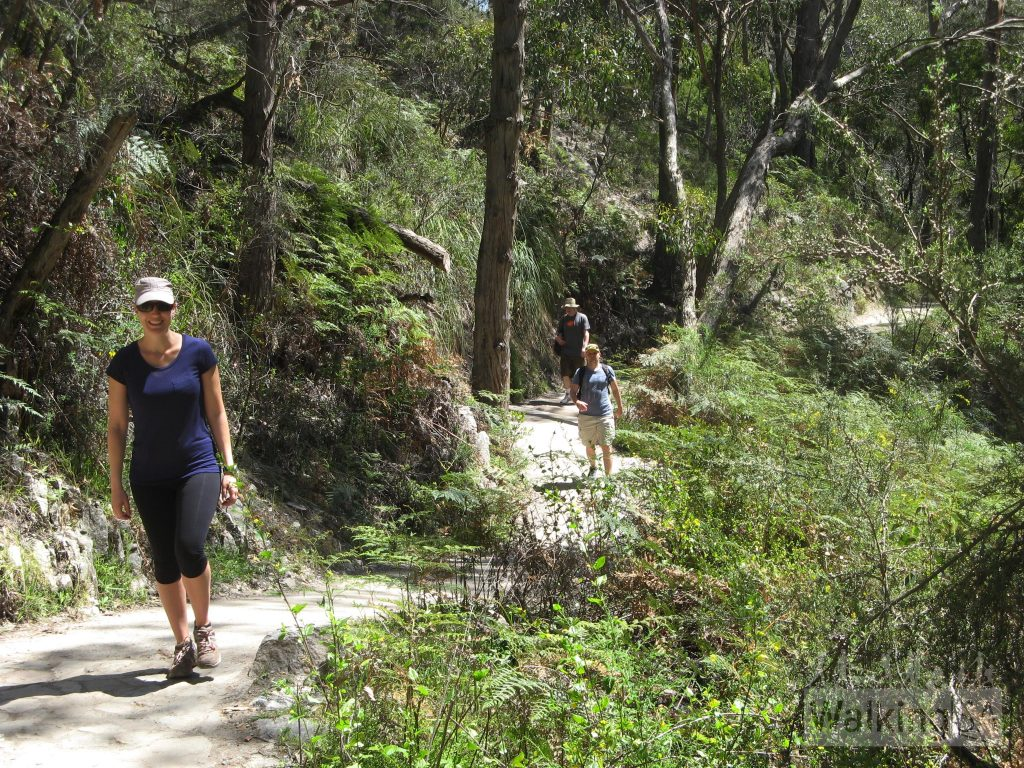 Waterfall Gully to Mt Lofty summit hike