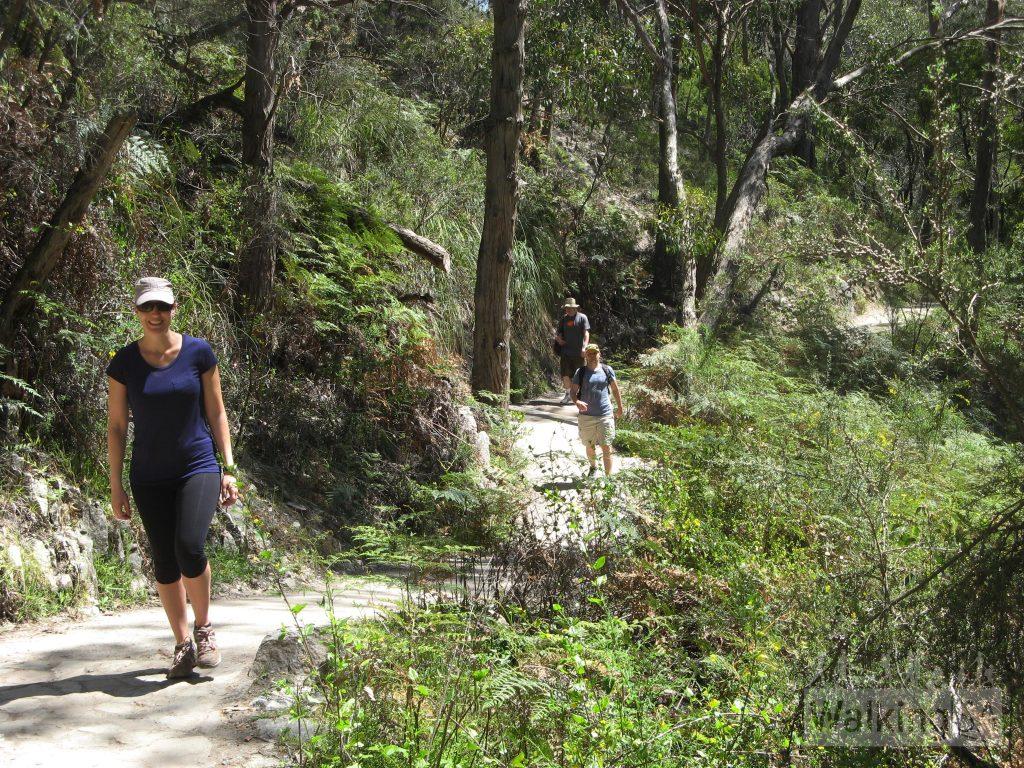 Waterfall Gully to Mt Lofty summit hike