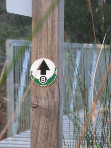 Excellent trail directional markers