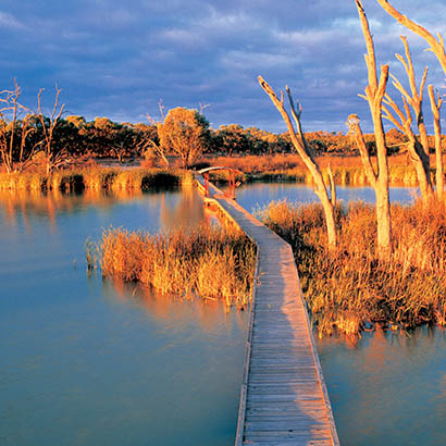 Banrock Station Wetland Walking Trails
