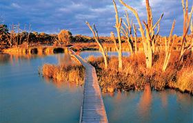 Banrock Station Wetland Walking Trails