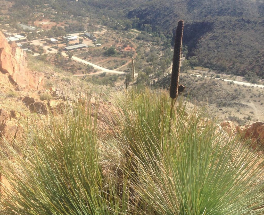 View of Village - Steve Hudson