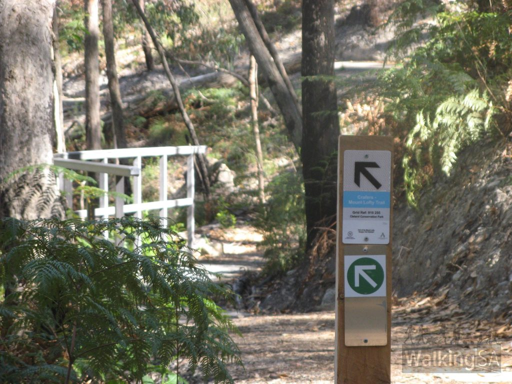 New trail leaves the SPA Fire Track