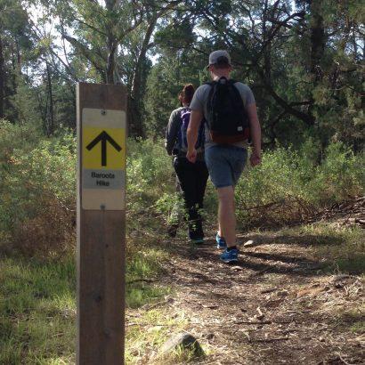 Baroota Hike, Mambray Creek