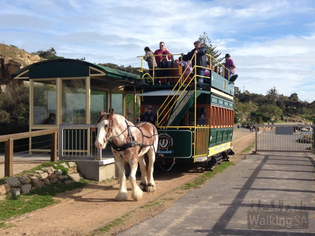 Catch the horse drawn tram over causeway