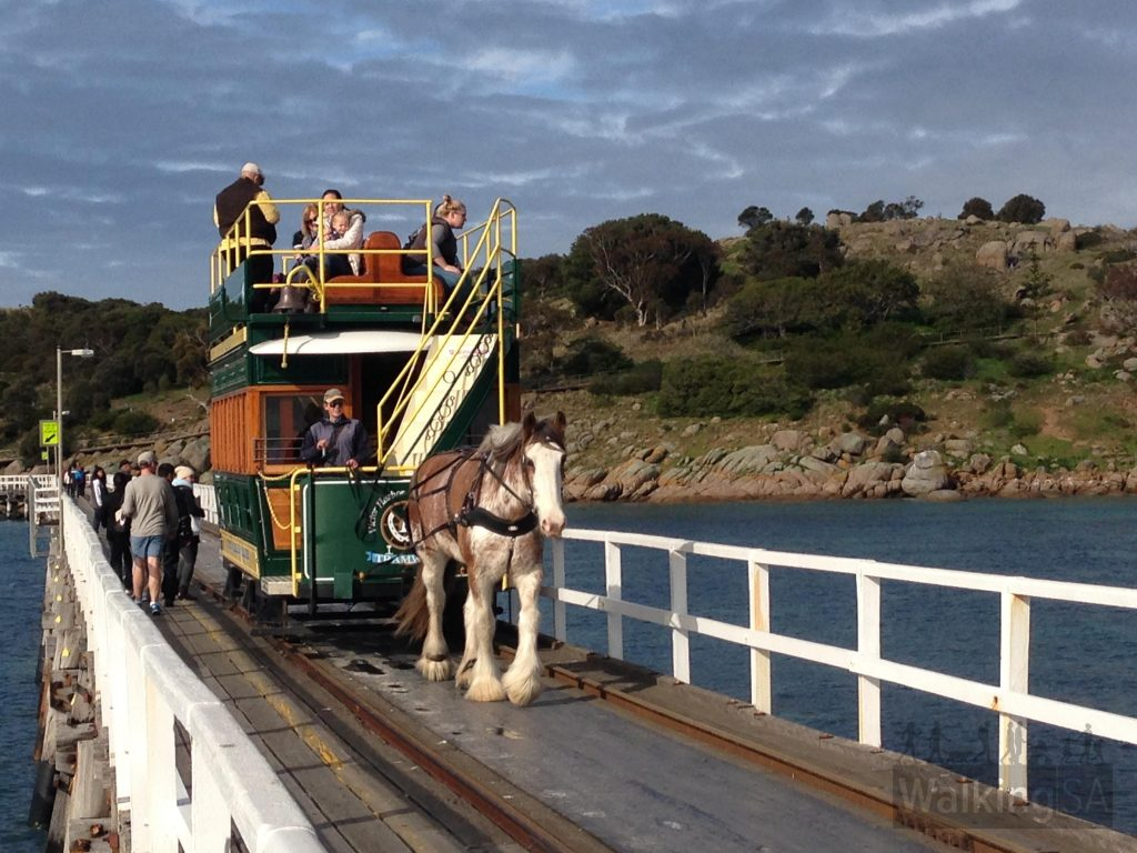 Horse drawn tram over causeway