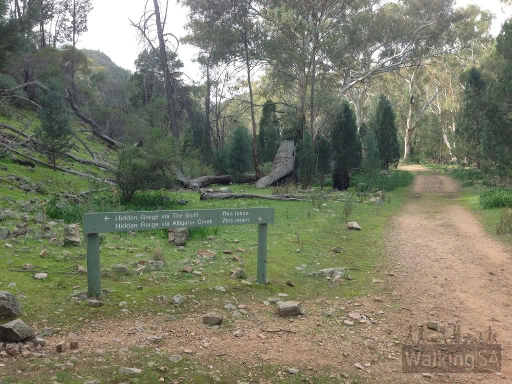 Junction at start, near Mambray Creek carpark
