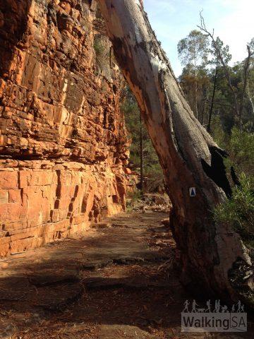 Entering Hidden Gorge