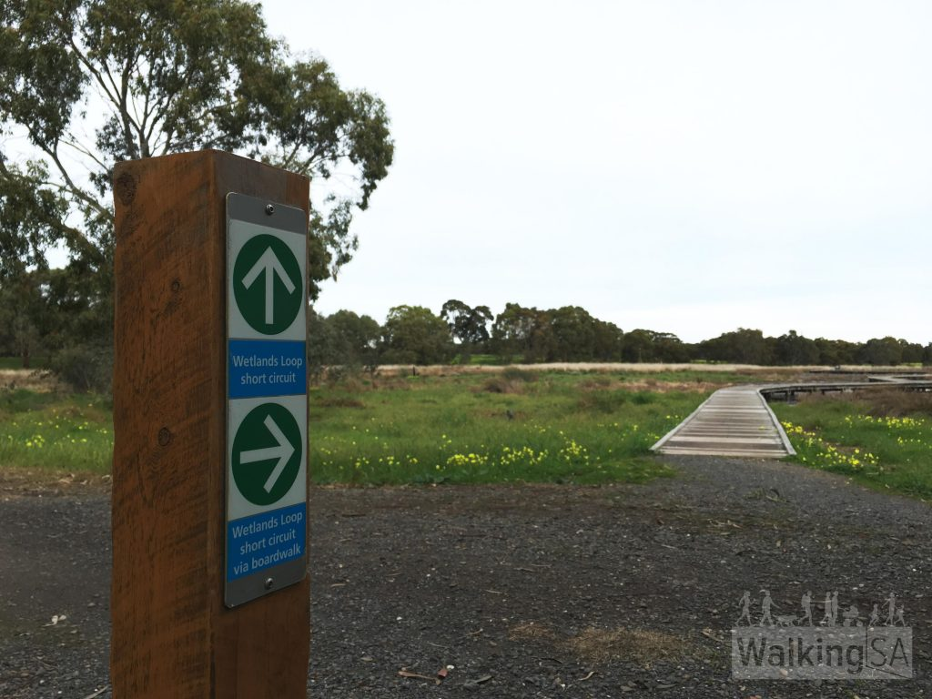 Trail options on the Wetlands Loop Trail