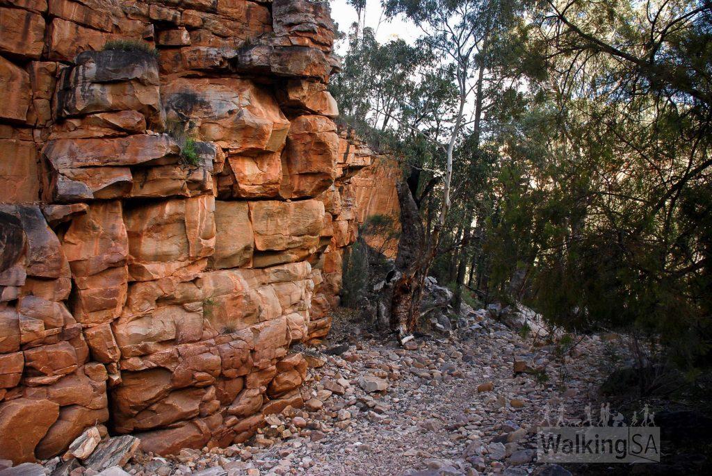 Walking deeper into Hidden Gorge