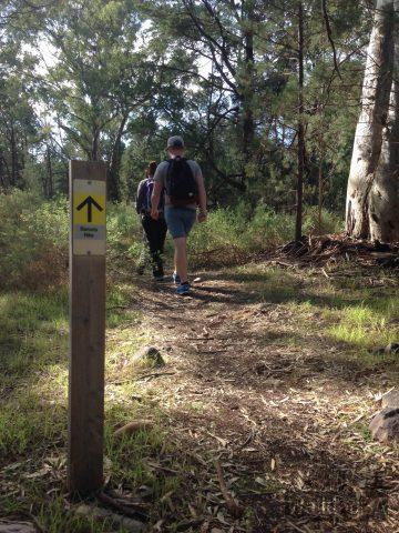 The path, Baroota Hike