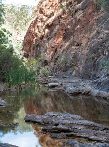 Tranquil waterholes to take in, and find routes around
