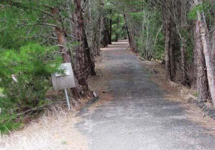 Rattler Trail near Auburn