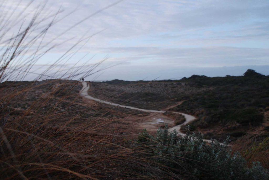 Robe Walking Trails & Loop Path