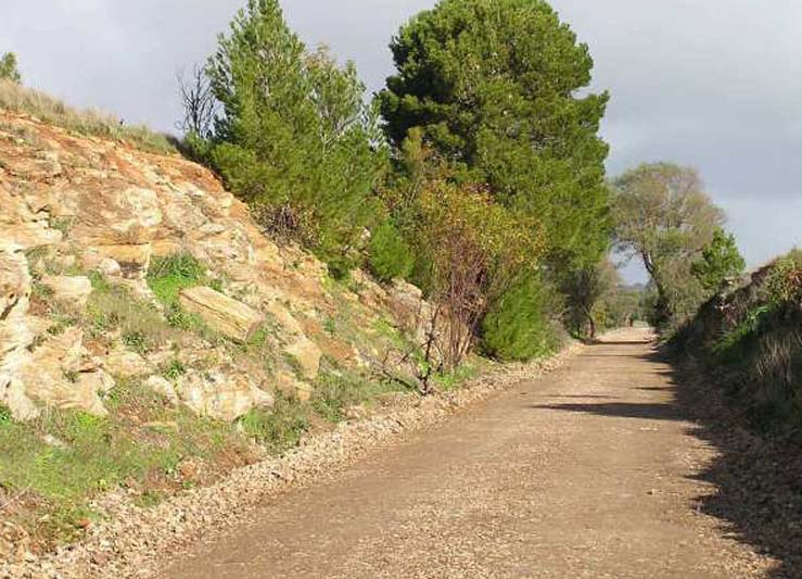 The Rattler Trail is a compacted gravel path