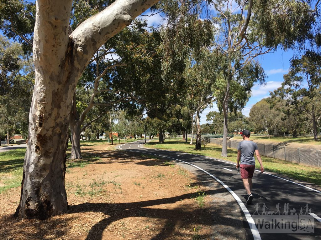 Walking on the pleasant Sturt River Linear Park