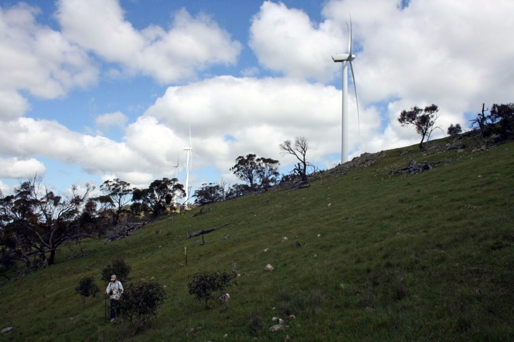 Waterloo Wind Farm, on the Webb Gap to Waterloo section