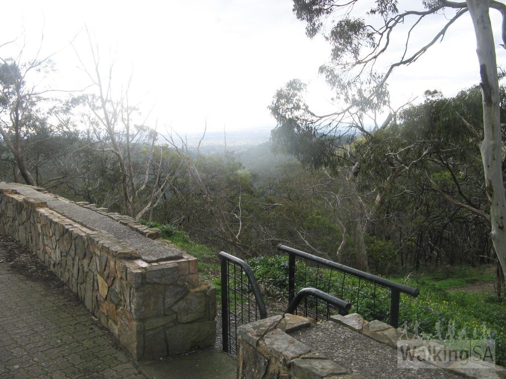 Access walking trails from Measday Lookout carpark
