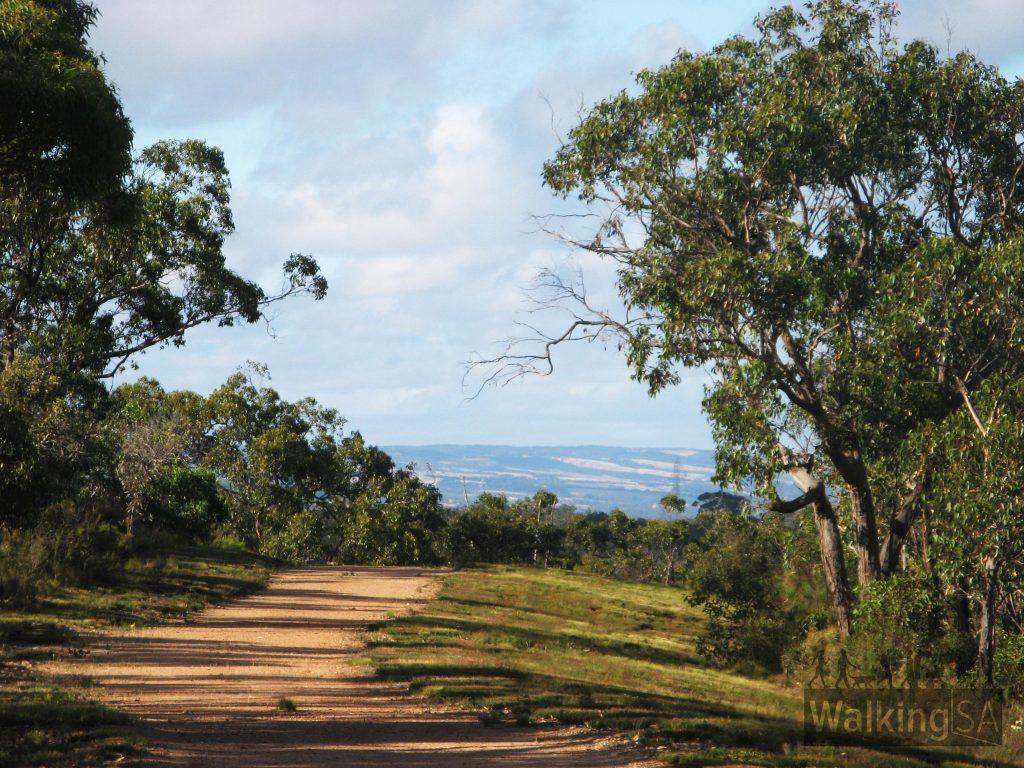 Fire track hike, views of Fleurieu hills