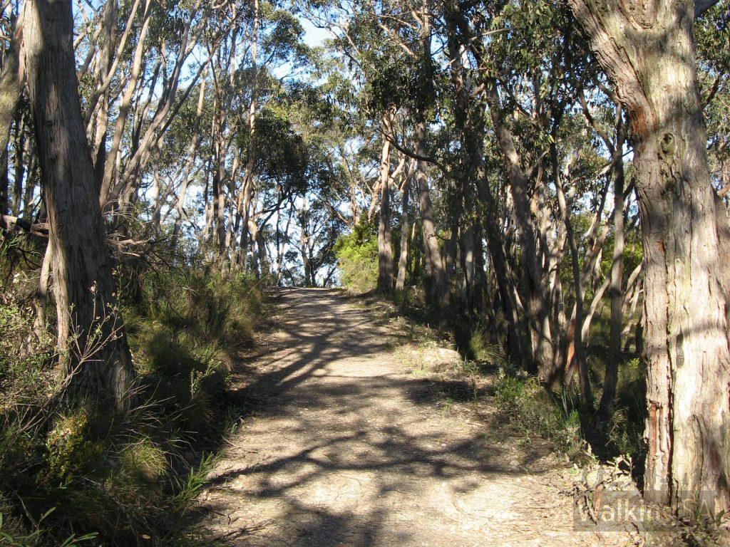Walking toward top of Rockdale Hill