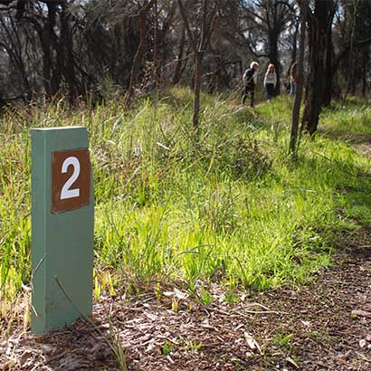 Angove Conservation Park