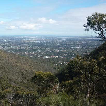 Black Hill Summit Hike