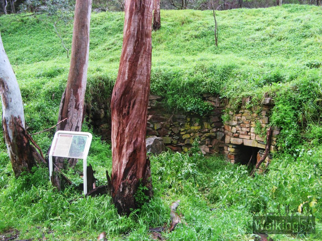 Chimney Ruins in Chambers Gully