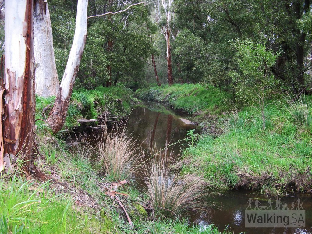 Cox Creek at Dearnery Reserve