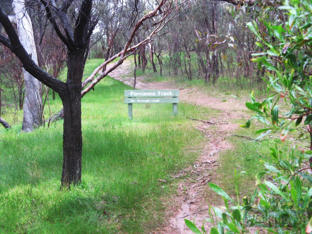 Follow the Parrianna Link Trail between the River Trail and Lomandra Trails